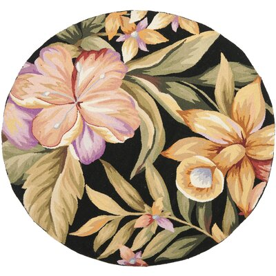 Everglades Black Novelty Area Rug Rug Size: Round 4
