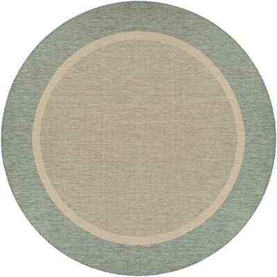 Linden Texture Green/Beige Indoor/Outdoor Area Rug Rug Size: Rectangle 53 x 76