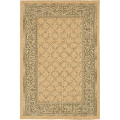 Celia Indoor/Outdoor Area Rug Rug Size: Runner 23 x 119