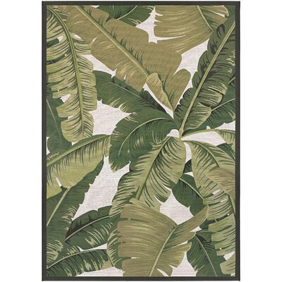 Maren Palm Lily Hunter Green/Ivory Indoor/Outdoor Area Rug Rug Size: 53 x 76