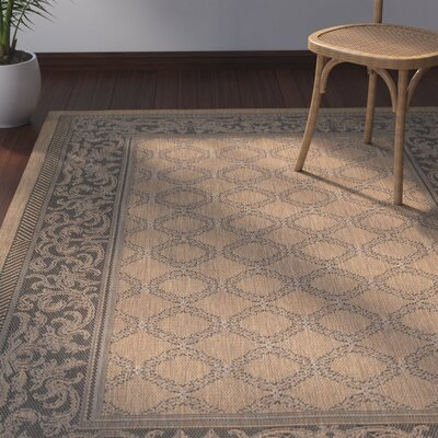 Celia Cocoa/Black Indoor/Outdoor Area Rug Rug Size: 39 x 55