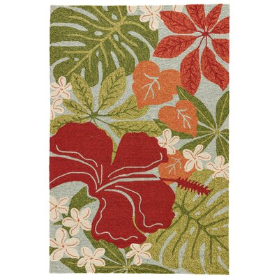 Artemi Hand-Hooked Indoor/Outdoor Area Rug Rug Size: Rectangle 2 x 3