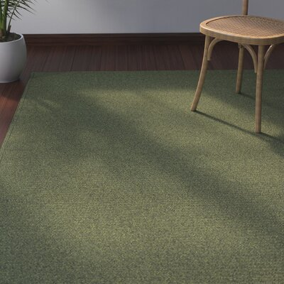 Josephine Indoor/Outdoor Area Rug Rug Size: 3 x 5