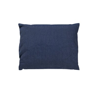 Trinidad Sunbrella Throw Pillow Color: Spectrum Indigo
