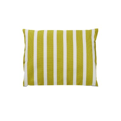 Adriano Sunbrella Throw Pillow Color: Shore Citron