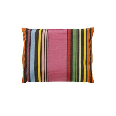 Trinidad Sunbrella Throw Pillow Color: Icon Pop