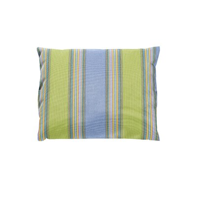 Adriano Sunbrella Throw Pillow Color: Bravada Limelite
