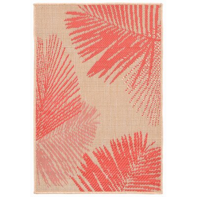 Cecile Natural Indoor/Outdoor Area Rug Rug Size: Rectangle 111 x 211