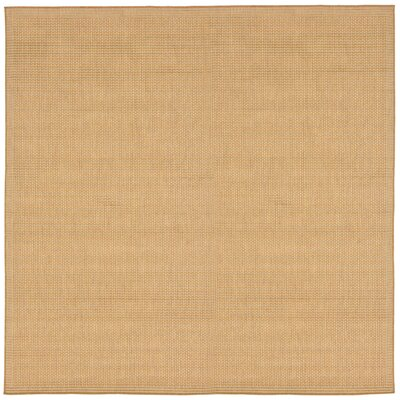 Cecile Beige Indoor/Outdoor Area Rug Rug Size: Square 710