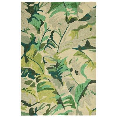 Rachael Hand-Tufted Green Indoor/Outdoor Area Rug Rug Size: Rectangle 5 x 76