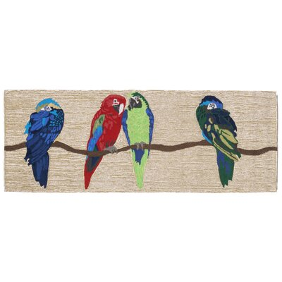 Glenshane Parrots Neutral Indoor/Outdoor Area Rug Rug Size: 26 x 4