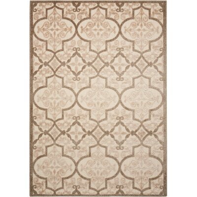 Seaside Cream/Beige Indoor/Outdoor Area Rug Rug Size: Rectangle 53 x 75
