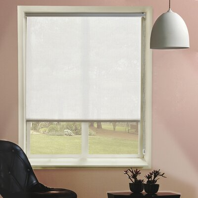 Sheer Roller Shades Size: 23 W x 72 L
