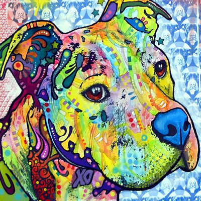 Thoughtful Pit Bull This Years I Graphic Art on Wrapped Canvas