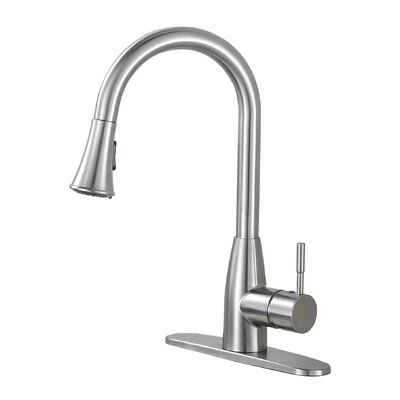 Contemporary Single Handle Pull Down Standard Kitchen Faucet with Deck Plate