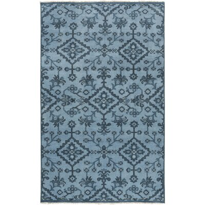 Shangrila Hand-Knotted Blue Area Rug Rug Size: Rectangle 56 x 86