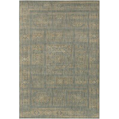 Ventanas Charcoal/Beige Area Rug Rug Size: 710 x 910