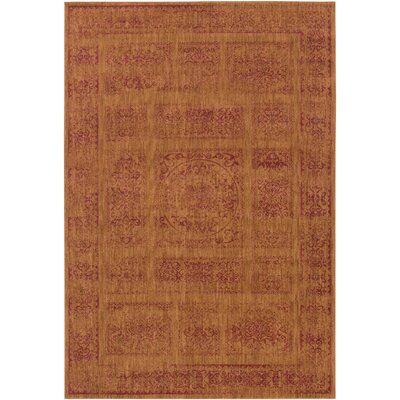 Ventanas Orange Area Rug Rug Size: Rectangle 27 x 47