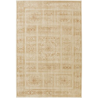 Ventanas Beige Area Rug Rug Size: Rectangle 53 x 73