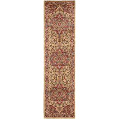 Clarion Red Area Rug Rug Size: Runner 22 x 16