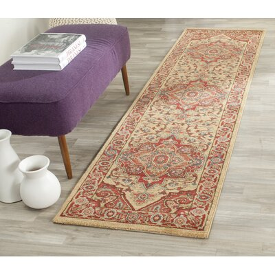Clarion Red Area Rug Rug Size: Runner 22 x 8