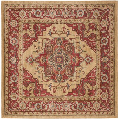 Clarion Red Area Rug Rug Size: Square 51 x 51
