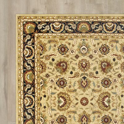 Aliante Hand-Tufted Sage/Navy Area Rug