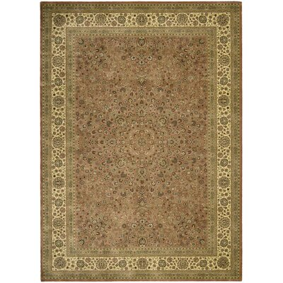 Olevia Persian Coffee Area Rug Rug Size: 19 x 31