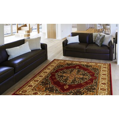 Caterina Red Area Rug Rug Size: 5'2