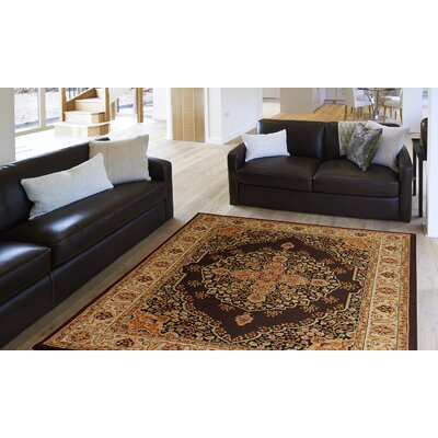Caterina Brown Area Rug Rug Size: 37 x 52