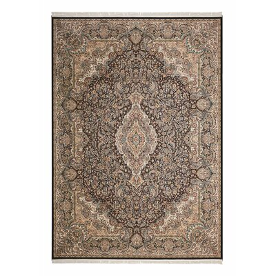 Catarina Brown/Navy Area Rug Rug Size: Rectangle 5 x 77
