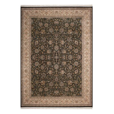 Catarina Brown/Navy Area Rug Rug Size: 99 x 139