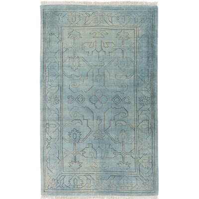 Singita Hand-Woven Blue Area Rug Rug Size: Rectangle 6 x 9