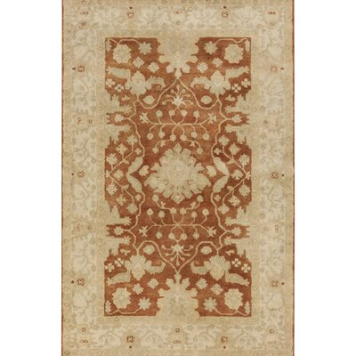 Raffles Hand Tufted Brown/Beige Area Rug Rug Size: 33 x 53