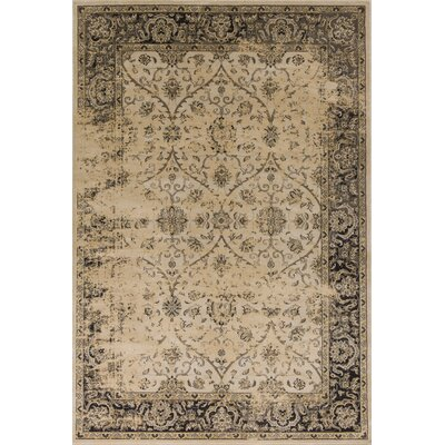 Bailor Ivory/Black Area Rug Rug Size: Rectangle 53 x 77