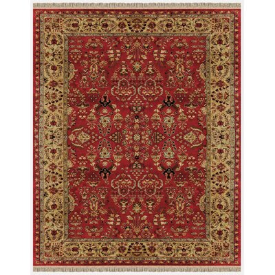 Barcroft Red/Light Gold Area Rug Rug Size: 36 x 56