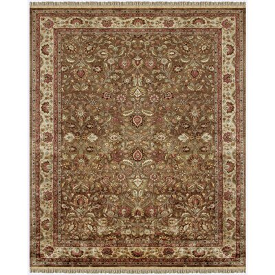 Barcroft Area Rug Rug Size: Rectangle 36 x 56