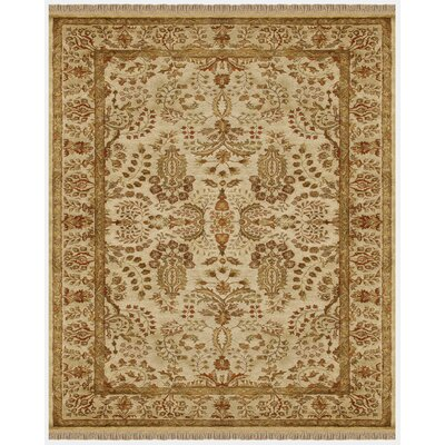 Barcroft Area Rug Rug Size: Rectangle 3'6