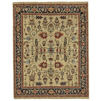 Barter Gold Area Rug Rug Size: Rectangle 86 x 116