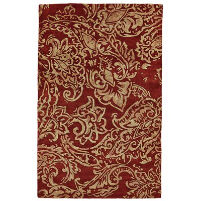 Barrell Red/Multi Area Rug Rug Size: 36 x 56