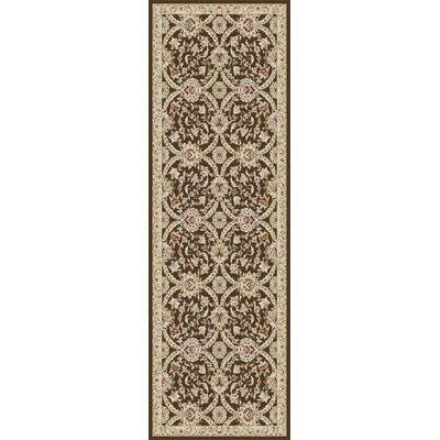 Springport Brown Area Rug Rug Size: Runner 27 x 73
