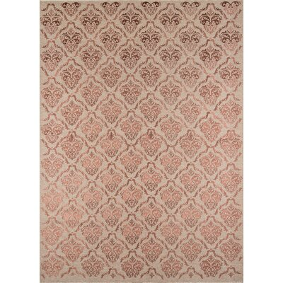 Caspian Hand-Woven Rose Area Rug Rug Size: Rectangle 36 x 56