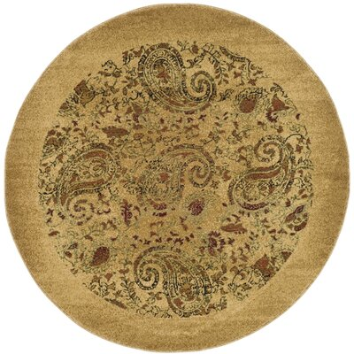 Barton Beige Area Rug Rug Size: Rectangle 53 x 76