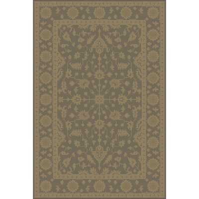 Fulham Hand-Tufted Dark Brown Area Rug Rug size: 4 x 6