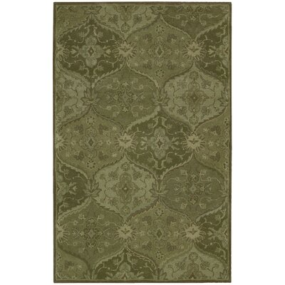 Barrick Hand-Tufted Green Area Rug Rug Size: 36 x 56