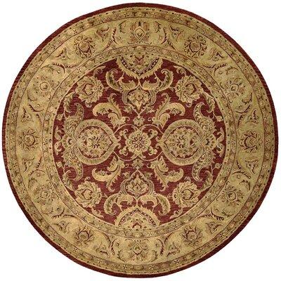 Bassham Cinnamon Rug Rug Size: Round 8