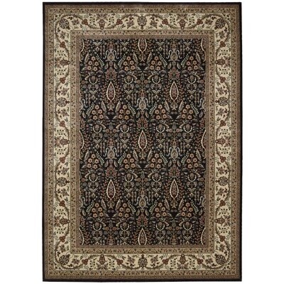 Bayhills Black / Brown Area Rug