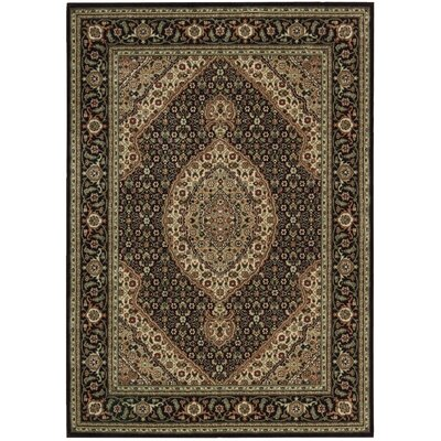 Bayhills Black/Brown Area Rug Rug Size: 36 x 56