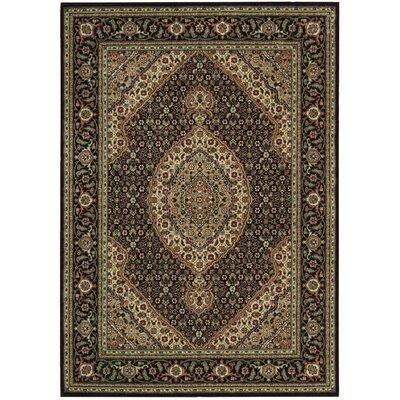 Bayhills Black/Brown Area Rug Rug Size: 53 x 75