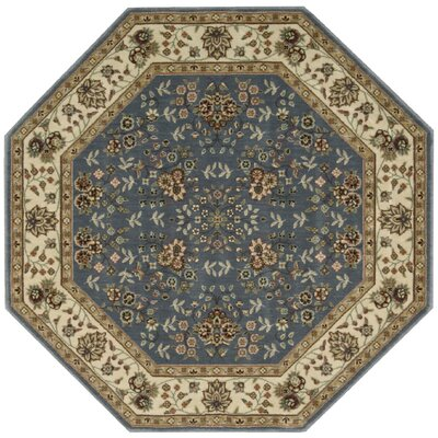 Bayhills Light Blue Area Rug Rug Size: Octagon 53